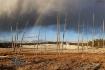 Yellowstone Rainb...
