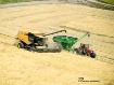 2016 Rice Harvest