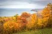 Splendor of Fall