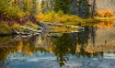 Beaver Pond, Oxbo...