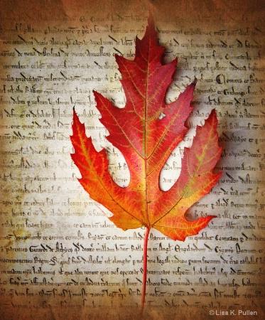~Autumn's Declaration~
