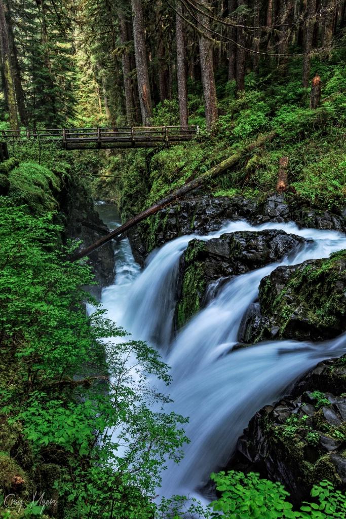 Sol Duc River & Falls - ID: 15266012 © Craig W. Myers