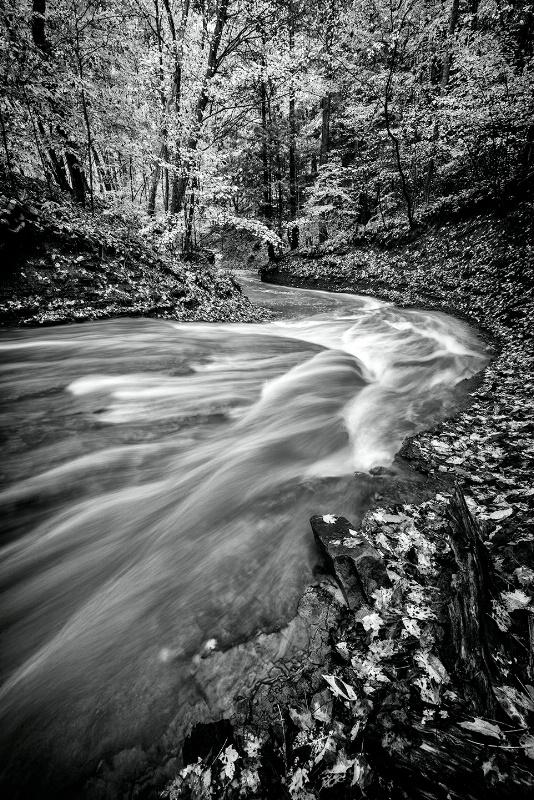 Columbia Run - CVNP - ID: 15266925 © Bill Currier