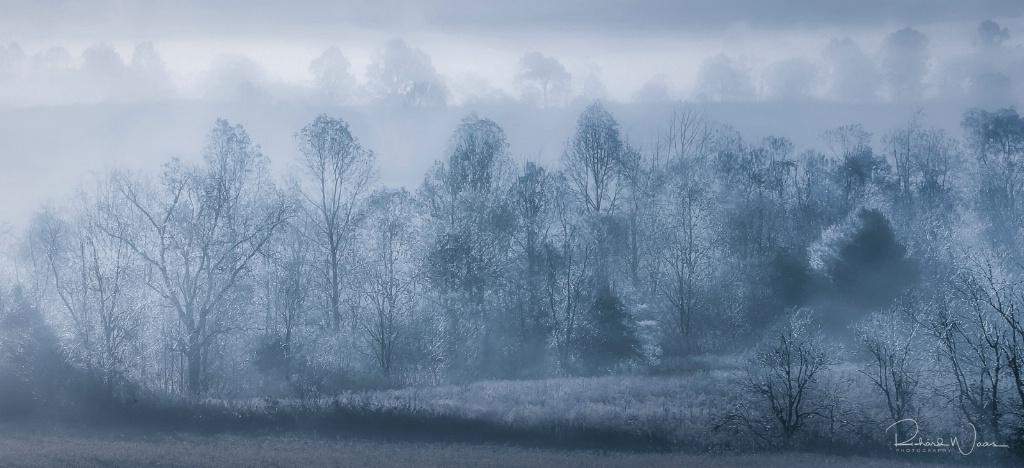 Early Morning Fog at Cades Cove - ID: 15270790 © Richard M. Waas