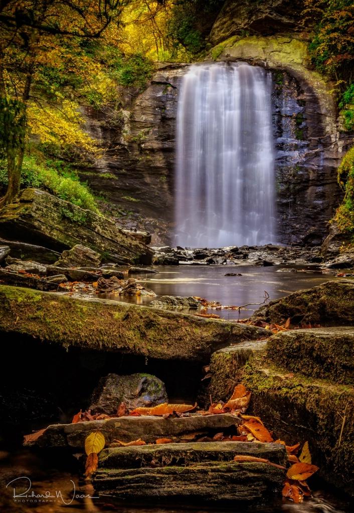 Looking Glass Falls - ID: 15270795 © Richard M. Waas
