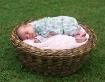 Basket full of Pr...