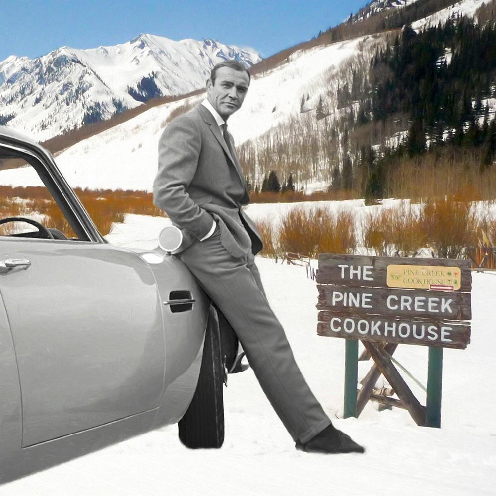 Bond...James Bond! - ID: 15280221 © Sheila Babbie