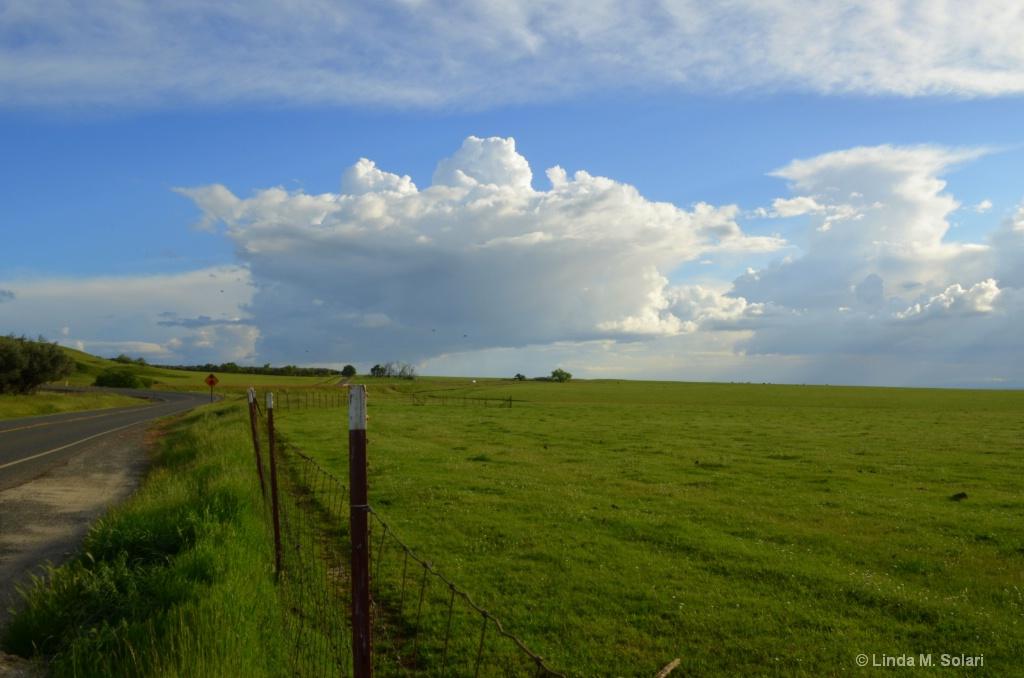 Fence Line Clouds - ID: 15282017 © Linda M. Solari