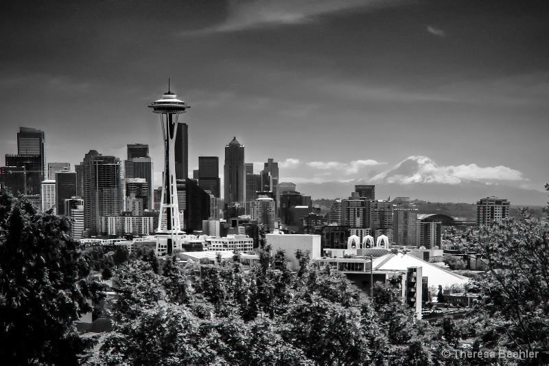 Seattle View - Black/White - ID: 15285418 © Theresa Beehler
