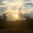 Sunset Chandler P...