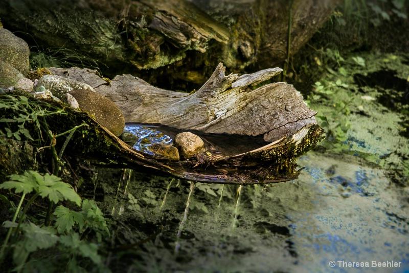 Soothing Waterdrip - ID: 15289454 © Theresa Beehler