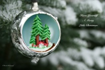 December 2020 Photo Contest 2nd Place Prize Winner