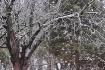 Winter's Evid...