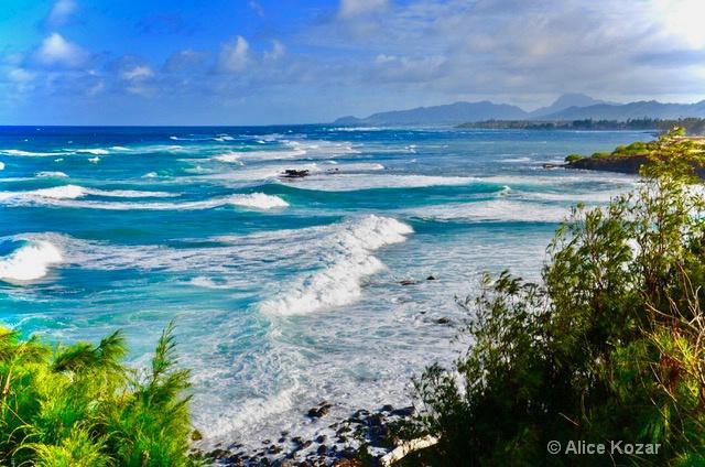 Surfs Up - ID: 15299808 © Alice Kozar