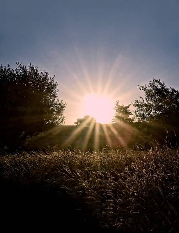 Sunset Harvest - ID: 15299869 © Denny E. Barnes