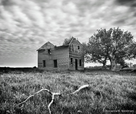 Remains of a country home
