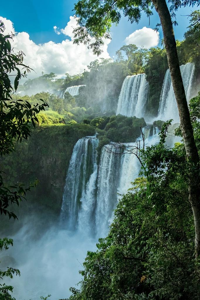 Multiple Levels of Iguazu Falls - Argentina - ID: 15327701 © Martin L. Heavner