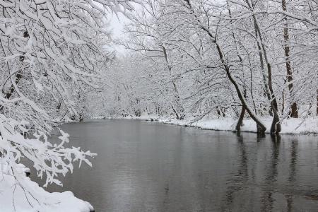 Patterson Creek
