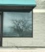 Empty Window Refl...