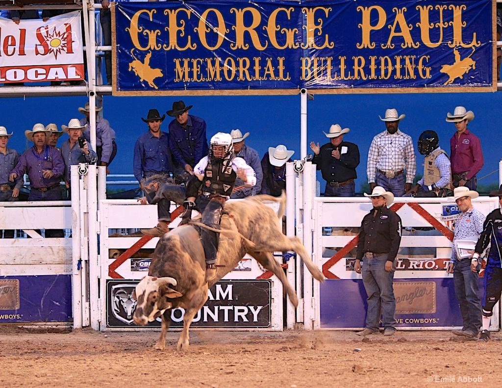 Trey Benton 1  Congratulations Winner and Finalist - ID: 15360625 © Emile Abbott