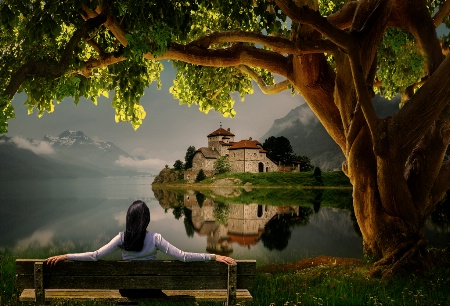 Photography Contest Grand Prize Winner - May 2017: Enjoying The View