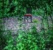 Chair in a cleari...