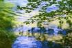 Painterly Reflect...