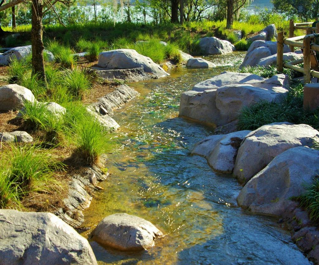 Wilderness Lodge Stream