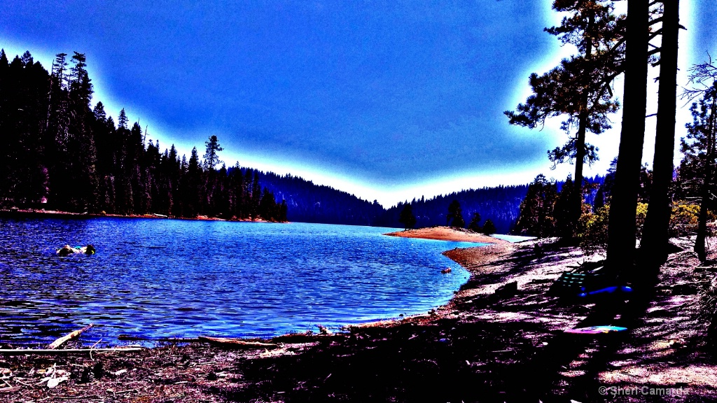 Sugar Pine Reservoir  - ID: 15443366 © Sheri Camarda