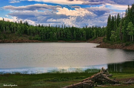 ~ Puffer Lake ~
