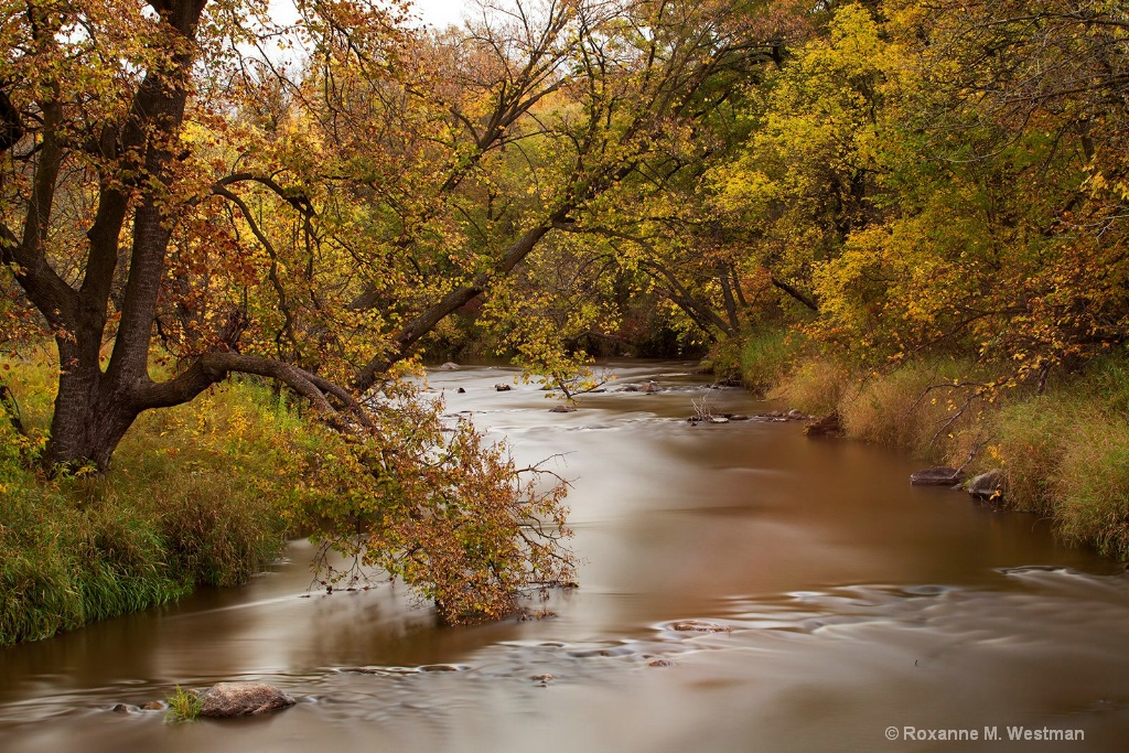 Long exposure dreamy fall river - ID: 15459695 © Roxanne M. Westman