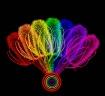 Thistle Rainbow