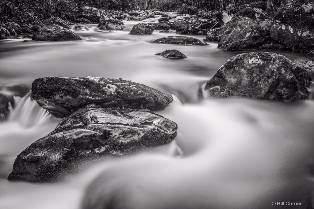 Middle Prong Little River - Tremont Smoky Mountain - ID: 15487698 © Bill Currier