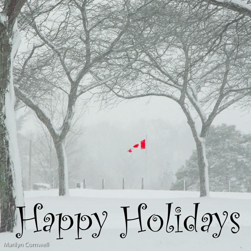 Happy Holidays - ID: 15507290 © Marilyn Cornwell