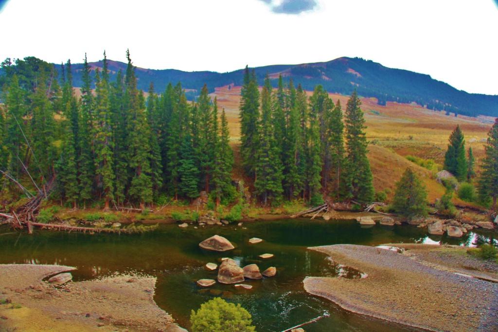 Upper Reach Yellowstone River
