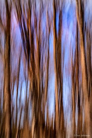 Winter Trees Swipe 1-27-18 349