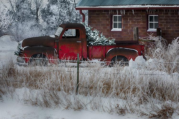 P3A8832xc Winter 2018 - ID: 15521535 © Raymond E. Reiffenberger