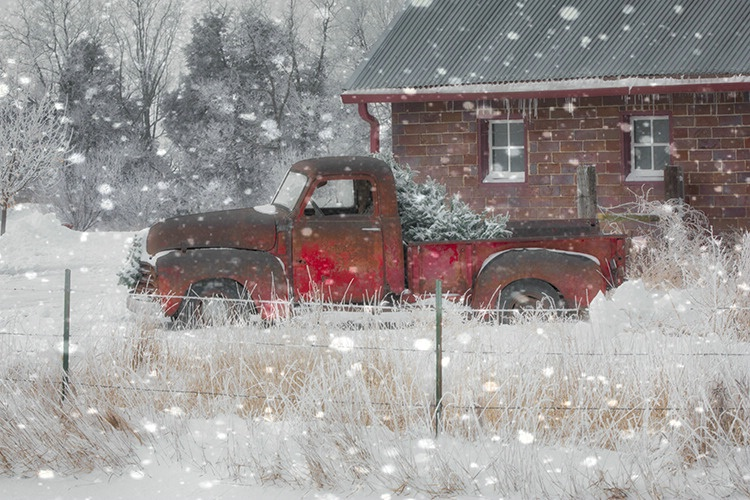 P3A8852xc Winter 2018 - ID: 15521536 © Raymond E. Reiffenberger