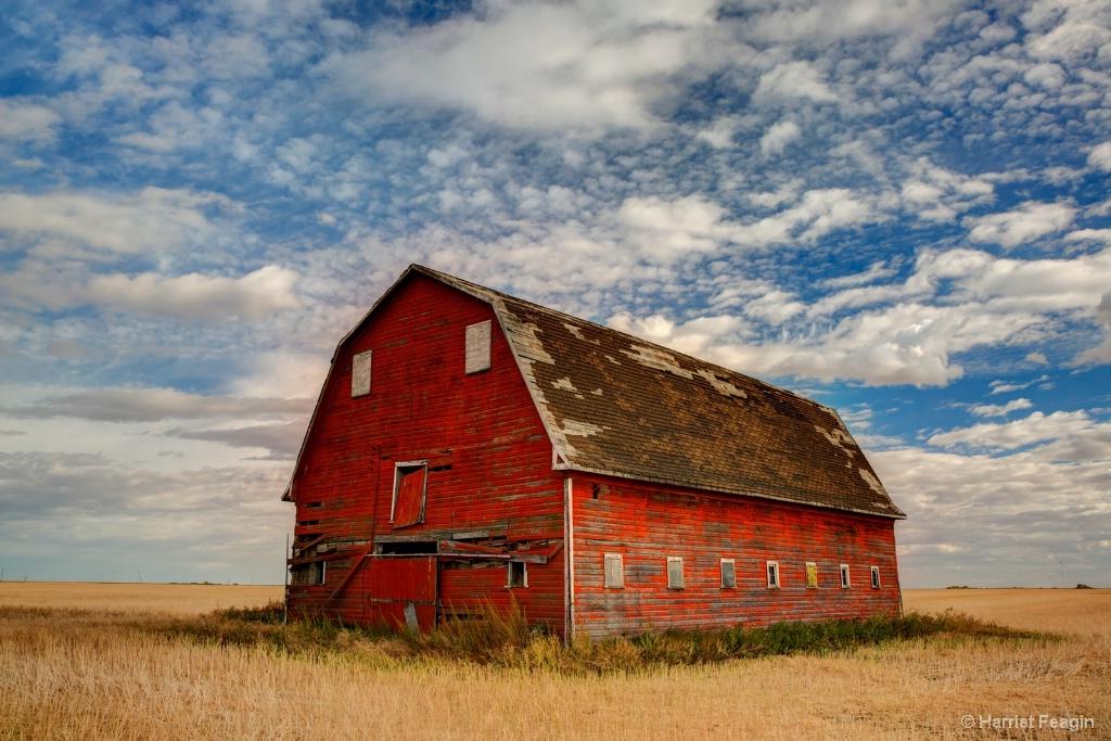 Red Barn Under a Confetti Sky