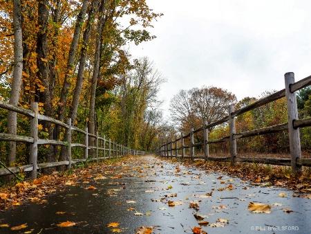 A walk iin the rain