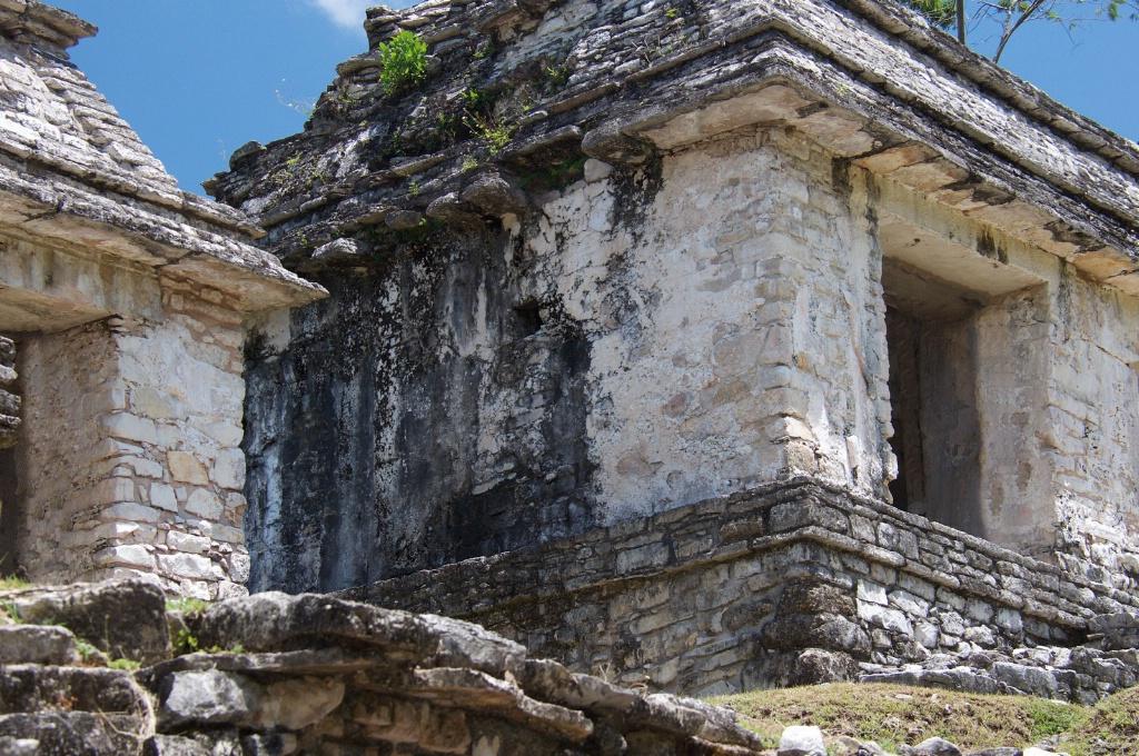 Palenque Chiapas  3 - ID: 15564577 © David Resnikoff