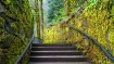 Stairs to the Fal...