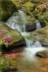 Bent Run Falls