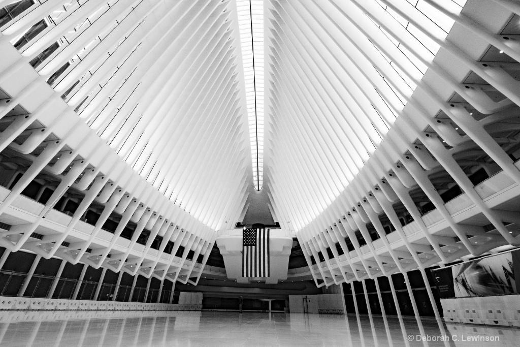 Oculus - ID: 15591864 © Deborah C. Lewinson