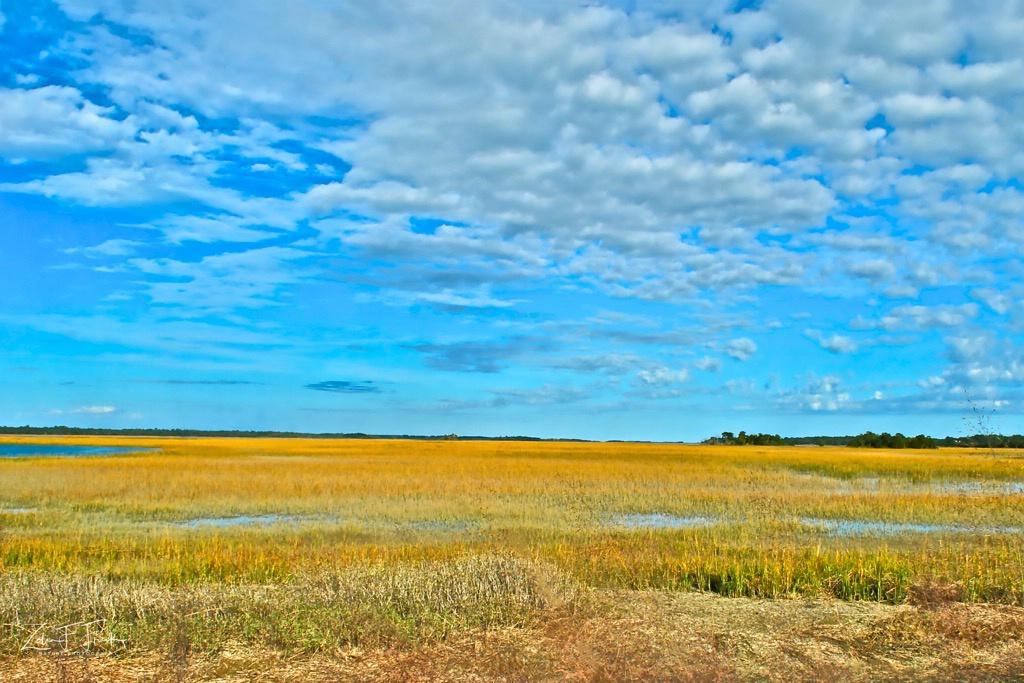 Morning at Kiawah Marsh - ID: 15592207 © Zelia F. Frick