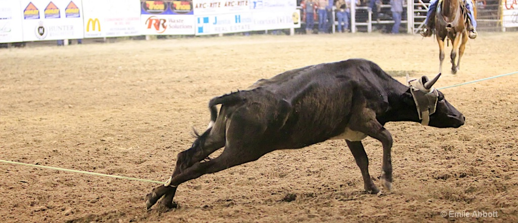 Horn catch Heel catch - ID: 15595167 © Emile Abbott