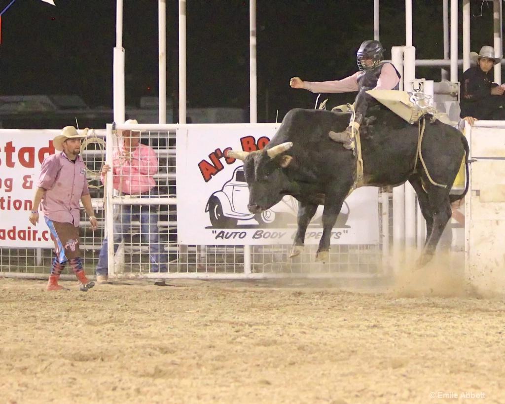High flying bull - ID: 15600940 © Emile Abbott