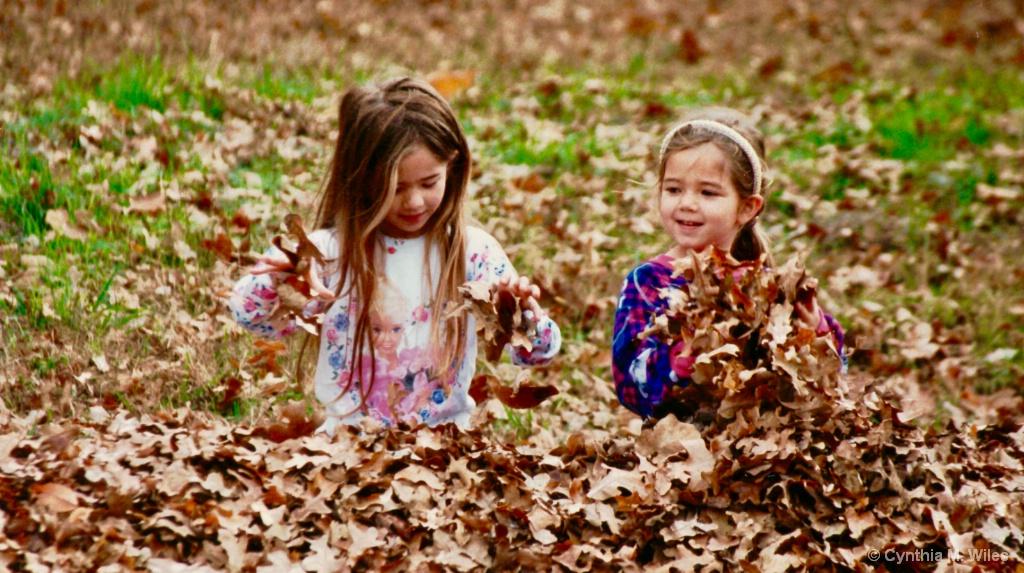 Autumn Ritual - ID: 15614382 © Cynthia M. Wiles