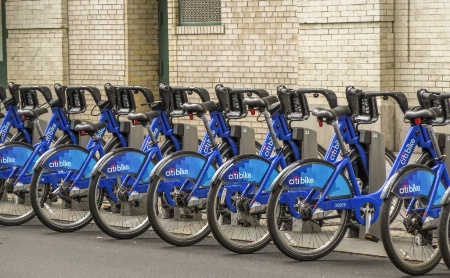 blue bicycle line up