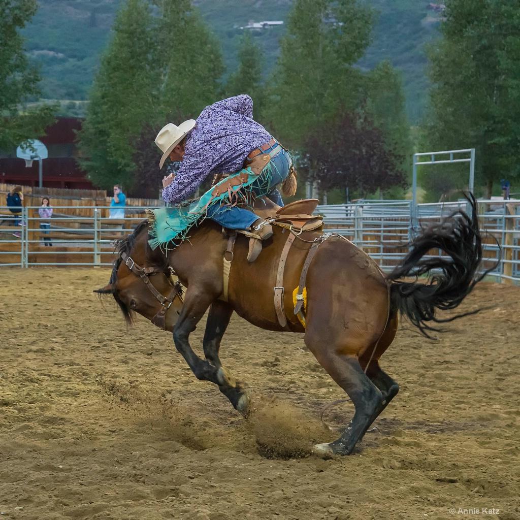 Wild Horse - ID: 15620861 © Annie Katz